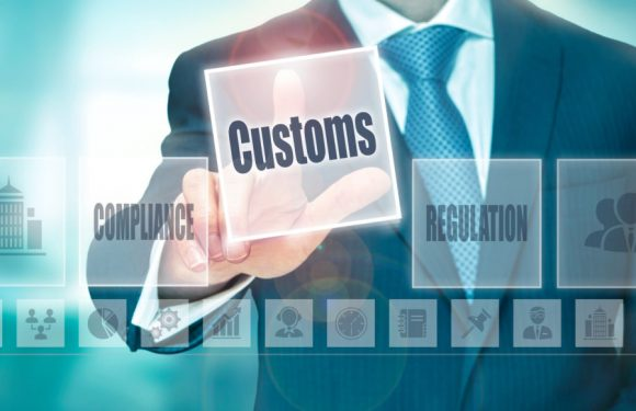 Why Importers Should Hire a Customs Broker Over Self-Filing